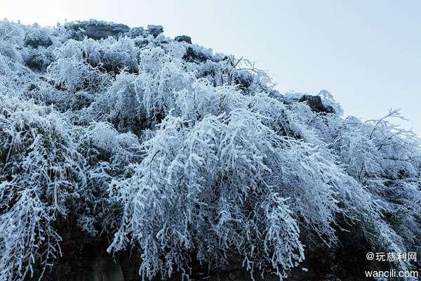 慈利网友行摄五雷仙山雪景,恍若走进童话世界
